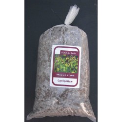 Erdboden Cypripedium, Dactylorhiza, Epipactis, einsatzbereite Mischung (Sack von 5 Kilo)